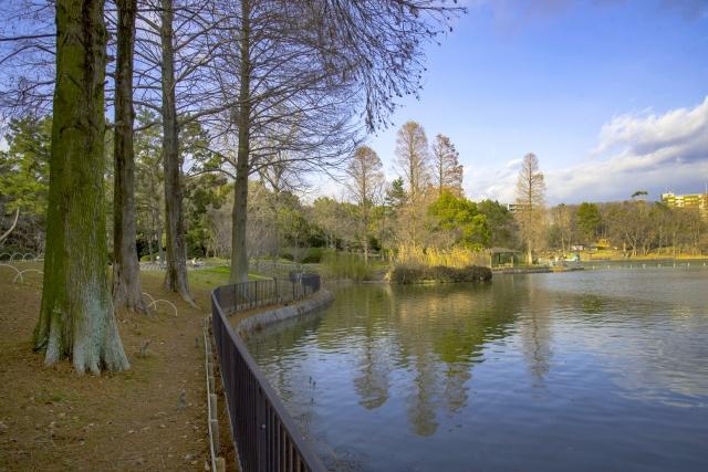 千里公園の写真