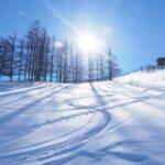 札幌の小学生がやっている習い事ベスト3!春休み・冬休みは何してる?
